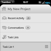 Mobile Project View
